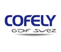Cofely DGF Suez Logo